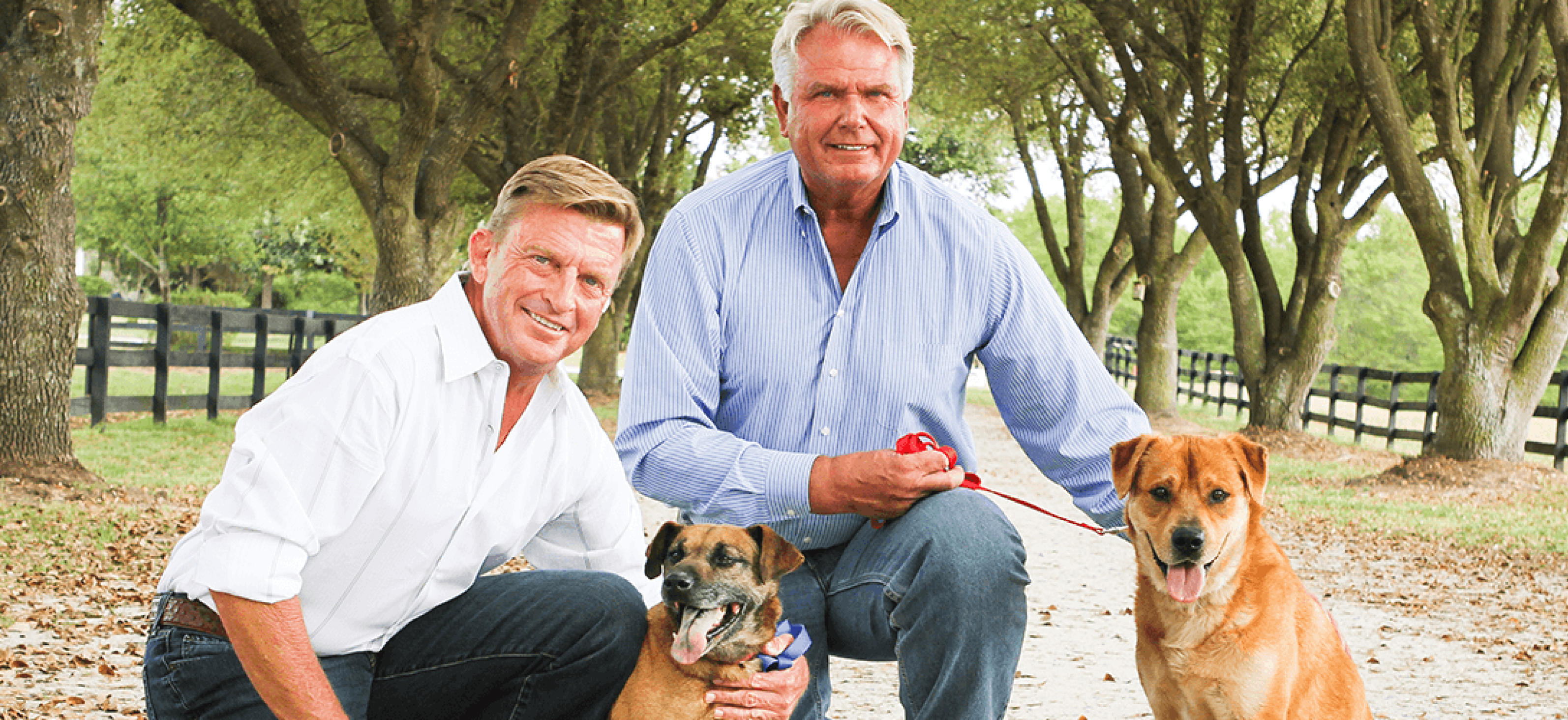 donate to Danny and Ron's Animal Rescue for free with your everyday purchases