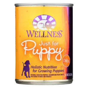 Wellness Puppy Food - 12.5oz. - Case Of 12